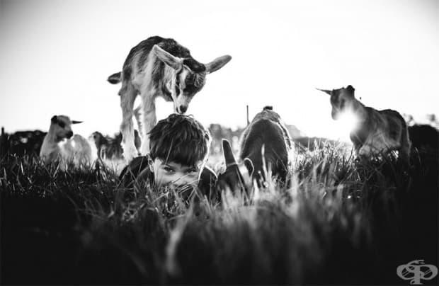 """""""…и нищо не стои между техните млади души и природата."""""""