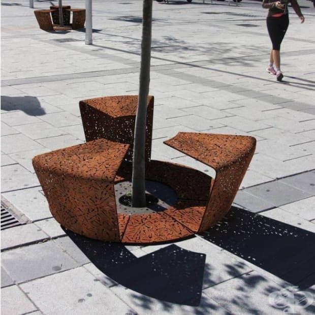 Две в едно: скамейка и ограда, предпазваща дръвчето