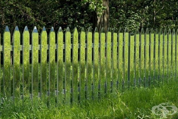 Огледална ограда, която се променя в тон със сезона
