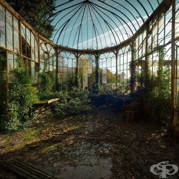 Oранжерия в зимна градина