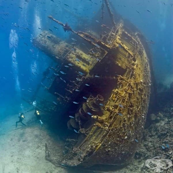 Корабокруширал търговски кораб, Червено море