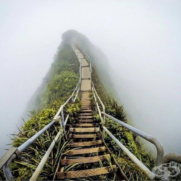 """Някога известното """"Стълбище към рая"""", Оаху, Хавай"""
