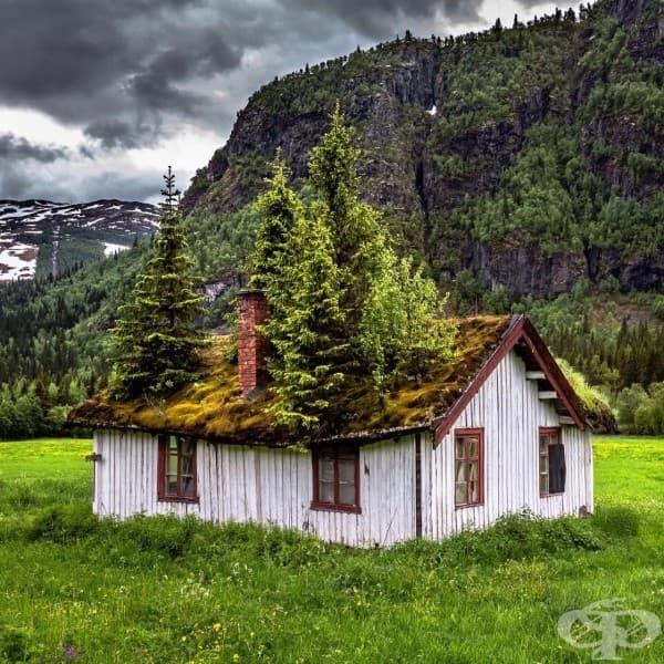 Къща в провинцията, Норвегия