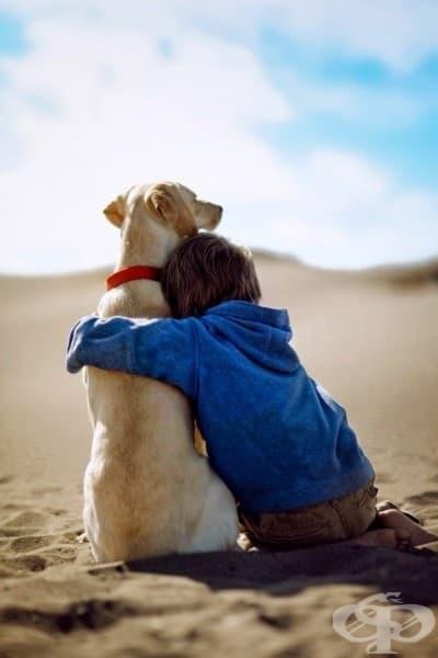 26 доказателства, че детето трябва да расте с животинче