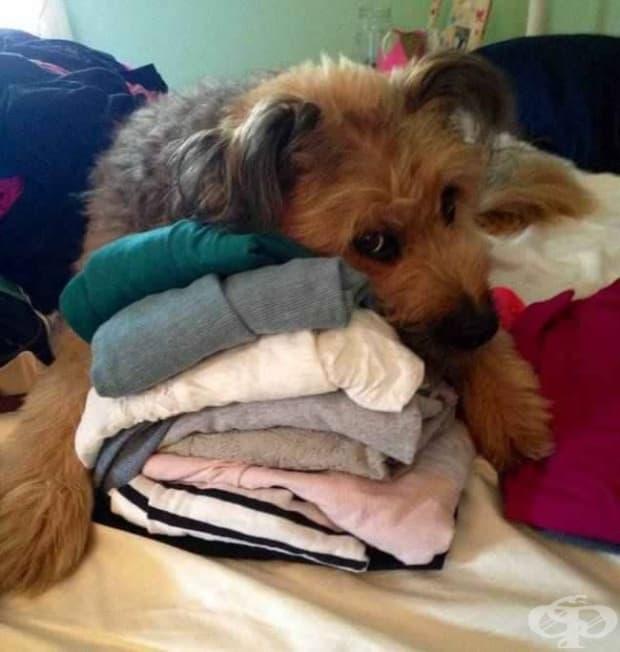 Имаш място за тези блузи, а за мен не?