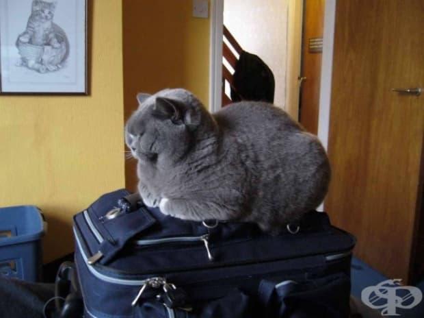 Събрал си е багажа без мен, но пак трудно ще тръгне…