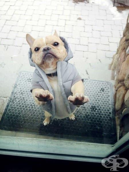Ооо, стига де, няма да измръзнеш в това яке!