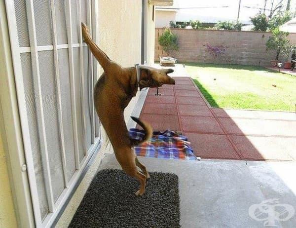 Отворете вратаааатааа…