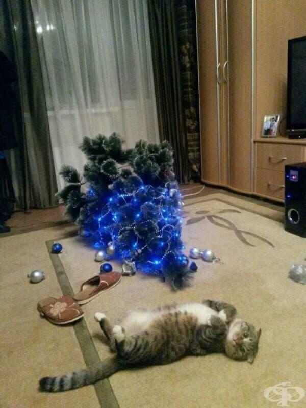 Предполагам, че Коледа свърши