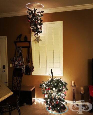 Коледна елха портал