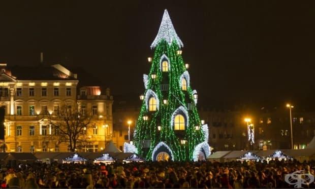 Вилнюс, Литва. Едно необичайно, но очарователно коледно дърво, украсено на Катедралния площад.