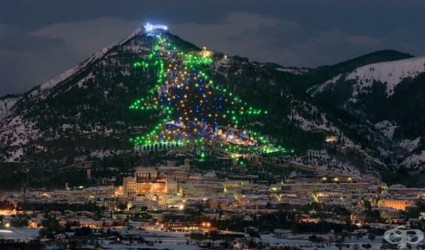 Джубио, Италия. Жителите на Джубио могат да виждат огромното коледно дърво от всяка точка на града. То е построено в планината Инджино и е високо повече от 650 м. През 1991 г. влиза в рекордите на Гинес.