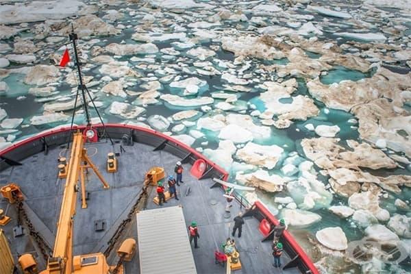 """""""Подготовка за туризъм в Северния ледовит океан"""" от Естер Хорват"""