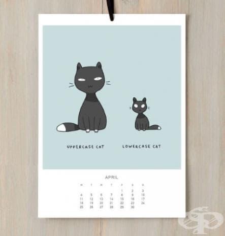 Главна котка и малка котка