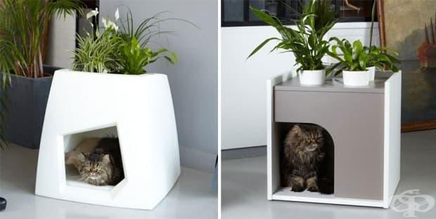 Котешка къщичка с цветя