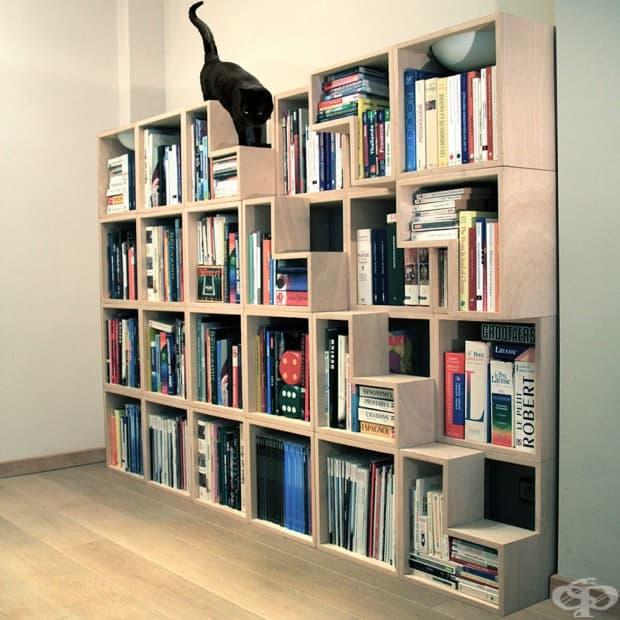 Полица за книги, която едновременно е и катерушка