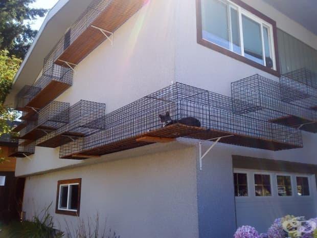 Котешка тераса-тунел, която обикаля къщата