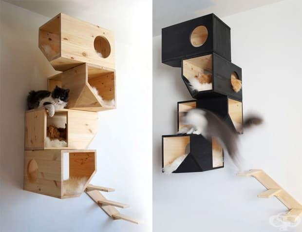 Котешко дърво