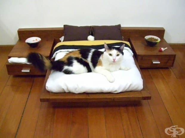 Мини спалня за котки