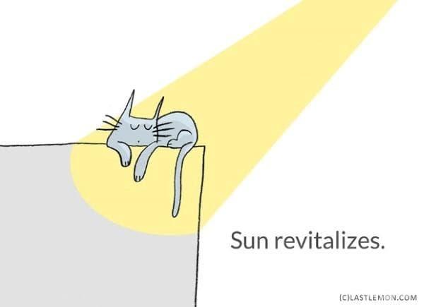 Слънцето дава живот.