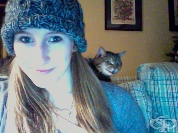 Определено тази котка не мисли доброто на своята собственичка