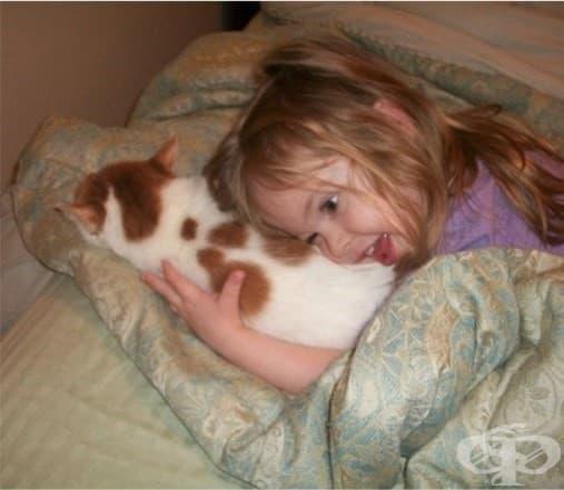 Деца и котки - най-сладкото приятелство
