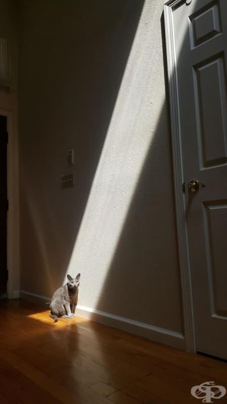 Къде си, слънчице? Не си отивай!