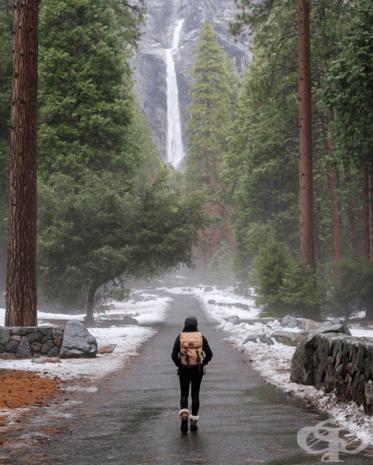 """Национален парк """"Йосемити"""", САЩ"""
