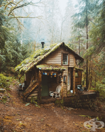 Горите на Вашингтон