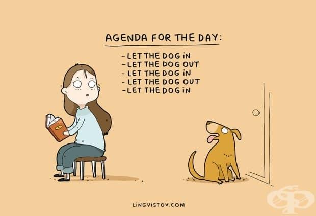 Дневен ред: - пусни кучето вътре - пусни кучето навън - пусни кучето вътре - пусни кучето навън