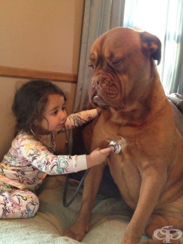 Винаги са готови да играят с децата.