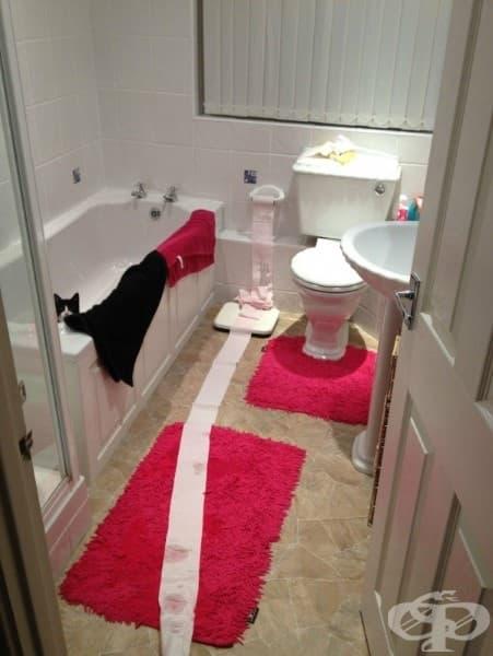Предполагам, че не знаеш кой ужасен човек е развил цялата тоалетна хартия, докато аз си взимах вана..?
