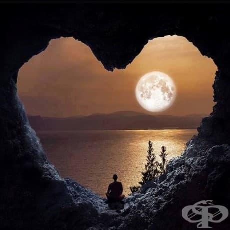 """""""Очакваме с нетърпение времето, когато силата на любовта ще замени любовта към силата. След това нашият свят ще познае благословиите на мира."""" - Уилям Гладстон"""
