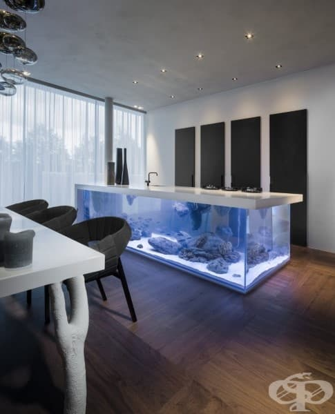 Кухня с аквариум