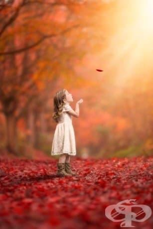 """""""Представете си всички хора, живеещи живота си в мир. Може да ме наречете мечтател, но аз не съм единственият такъв, надявам се някой ден да се присъедините към нас и светът да бъде като едно цяло. . """" - Джон Ленън"""