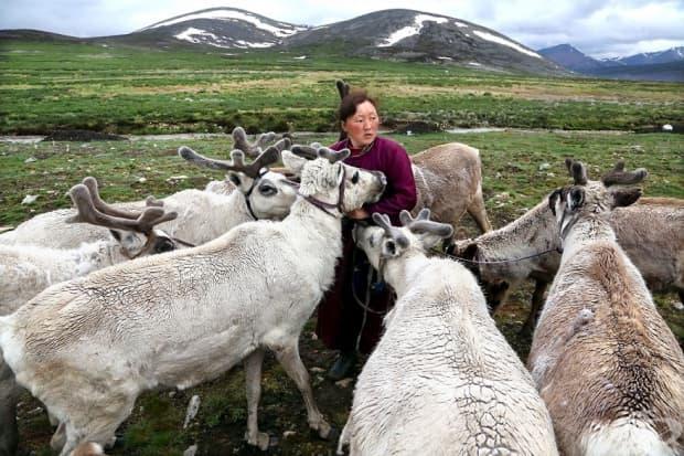 Номади в Монголия