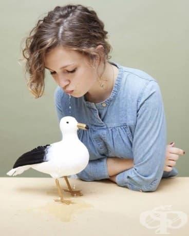 Ако ви хванат да плюете върху чайка във Вирджиния, ще бъдете наказвани. Ех, само ако можехме да хванем една ... заслужава си една бърза проба.