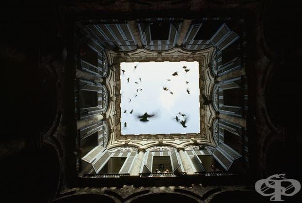 Ято птици излитат от затворен двор в Old Havana, декември 1987