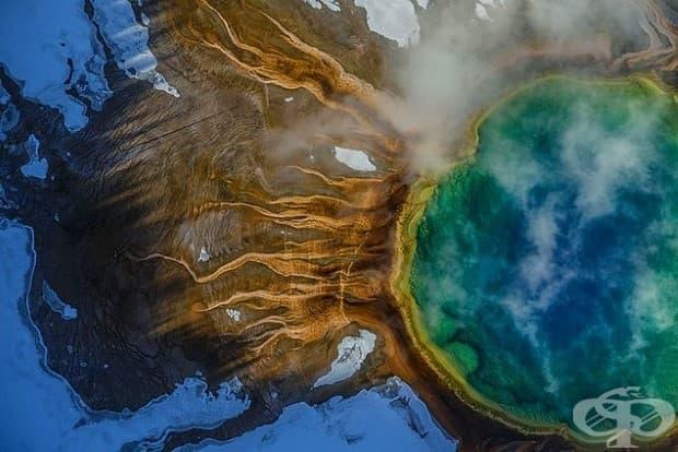 Цветовете на Гранд Призматик Спринг в Йелоустоун идват от термофилни: микроби, които виреят в горещите води.
