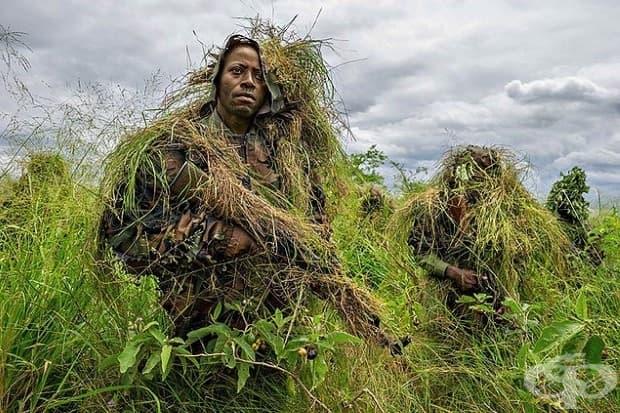 Рейнджъри в Парк Вирунга в Демократична република Конго се подлагат на военен стил обучение, включващо тактика за засада, поради постоянната заплаха от въоръжени групи.