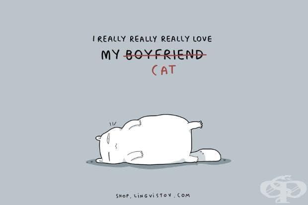 Аз наистина, наистина, наистина обичам моето... котка