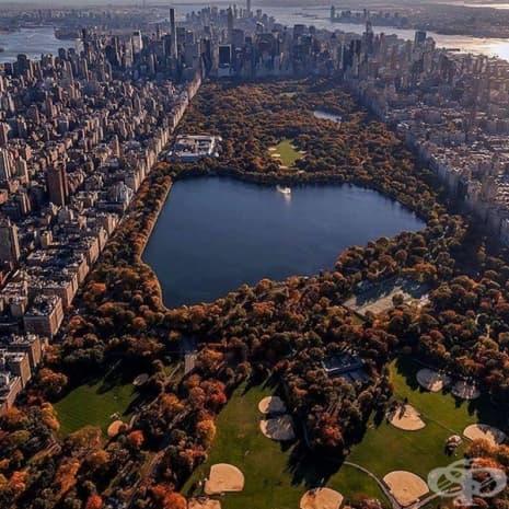 Ню Йорк Сити