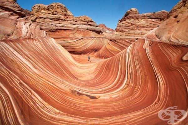 Каньонът на вълните, Аризона, САЩ