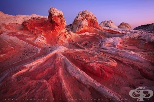 Пустиня в северна Аризона, САЩ