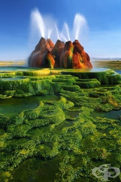 Гейзерът Флай, Невада, САЩ
