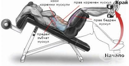 Обратни коремни преси на наклонена лежанка с утежнение