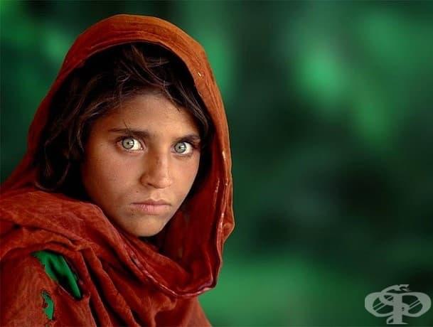 Предпазливост: Шарбат Гула, която остава сирак по време на атаките на Съветския съюз в Афганистан и е изпратена в бежански лагер в Насир Багх, Пакистан.