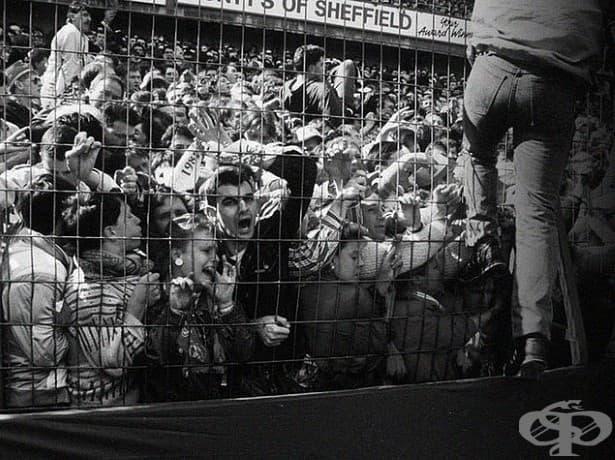 Паника: 96 починали и 766 контузени при спонтанна масова акция на футболен мач в Англия през 1986 година.