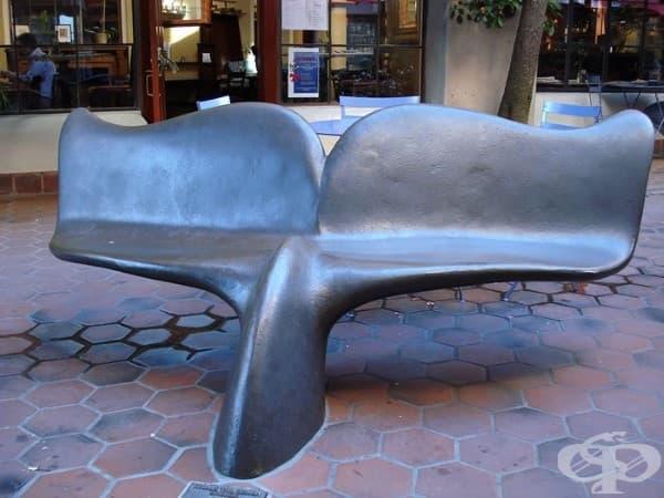 Скамейка под формата на опашка на кит