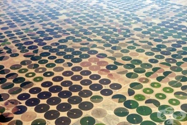 Полета на земеделски производители в Саудитска Арабия.